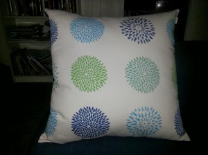Newest member of the throw pillow family