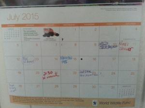 I love an empty calendar